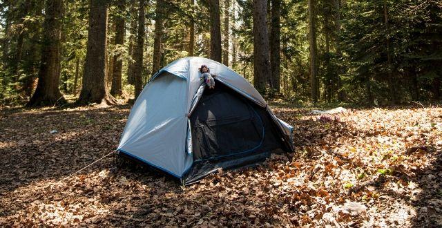 Tenda blu montata in un bosco