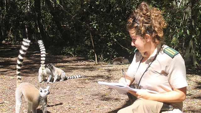 Ragazza inginocchiata vicino a due lemuri - Chiara Grasso EticoScienza