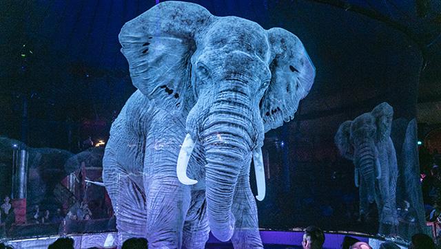 Ologramma di elefante al Circus Roncalli