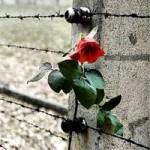Molte a Torino le iniziative per la Giornata della Memoria