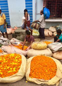 India mercato dei fiori di Calcutta