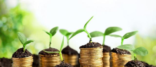 Colonne di monete con sopra piantine - bioeconomia